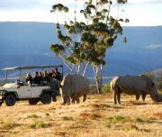 Inverdoorn Vehicle Rhino
