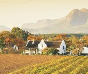 Wine Farm Stellenbosch